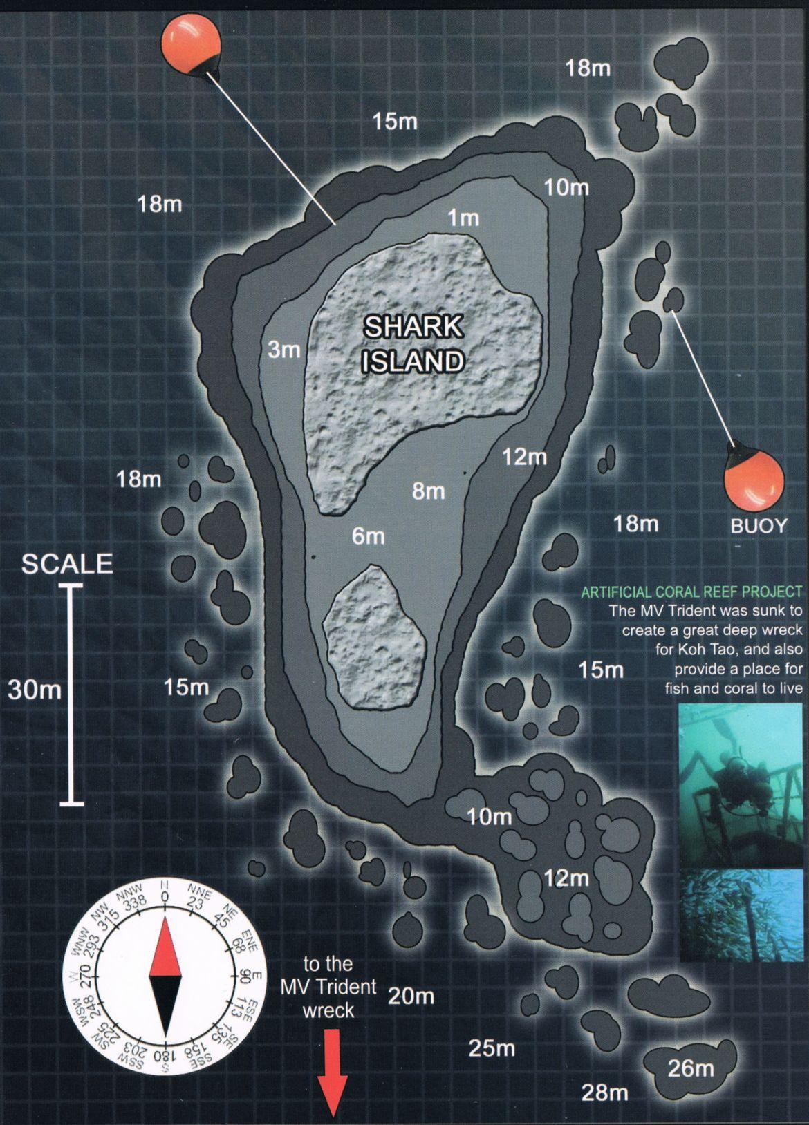 Divesite Shark Island